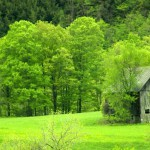 A sea of green surrounds Tucker&#039;s Barn in Tunbridge, Vermont. (Photo: M.S. Maguire)