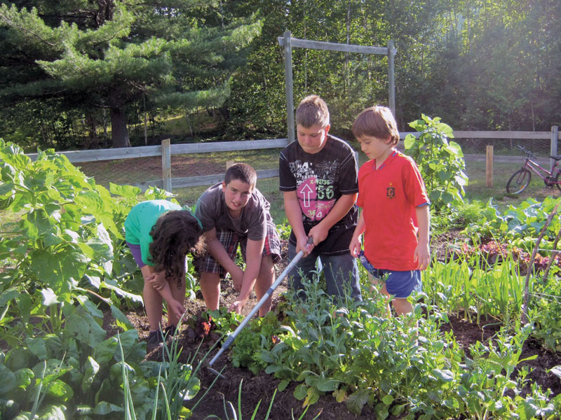 Sun Youth, TD Bank show how a garden can grow