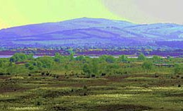 "Enhanced vision of Croghan Hill rising from the bog in Ireland. The word ""bog"" is a 16th-century adaptation of the Irish bogach.  (Photo: Sarah777)"