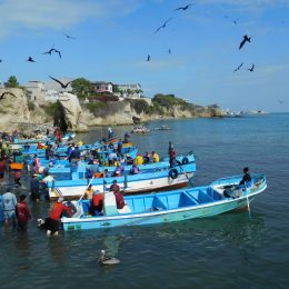 Ecuador: There's something fishy going on in La Libertad