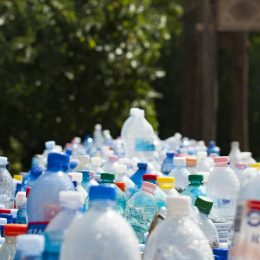 Loss of major recycling partner calls for action at home